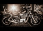 Honda Shadow 700 examples